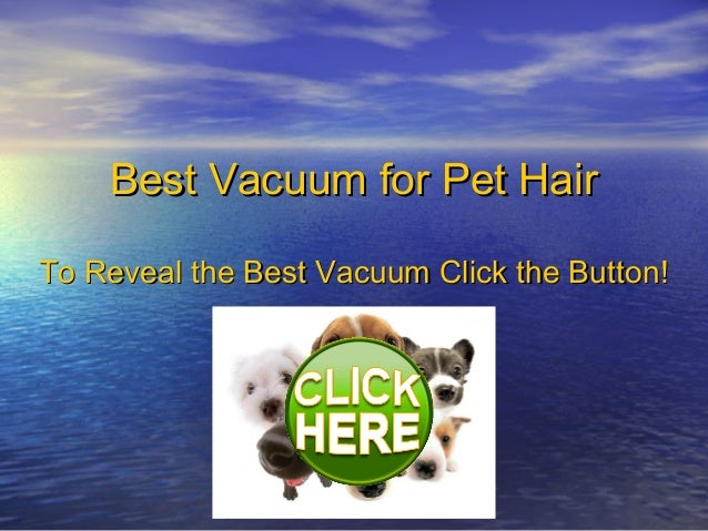 Best Vacuum for Pet Hair - Top 3 Vacuums Revealed