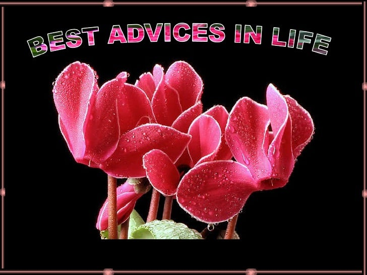 Best Advices In Life