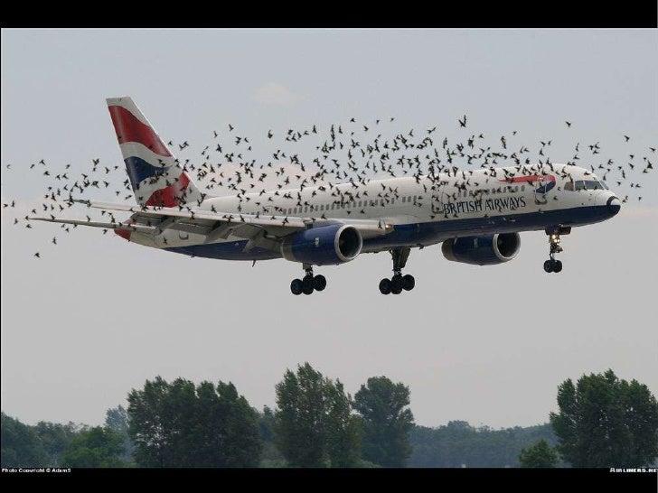 Best aviationphotographyeverbarnone