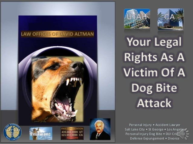 Your Legal Rights As A Victim Of A Dog Bite Attack Personal injury • Accident Lawyer Salt Lake City • St George • Los Ange...