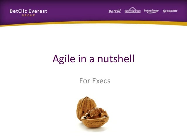 Agile in a nutshell For Execs