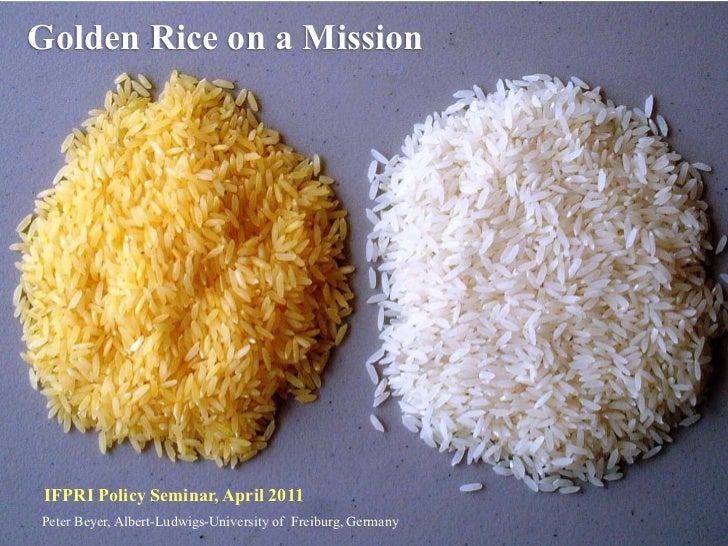 Golden Rice on a Mission IFPRI Policy Seminar, April 2011Peter Beyer, Albert-Ludwigs-University of Freiburg, Germany