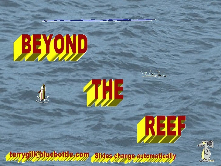 BEYOND THE REEF [email_address] Slides change automatically