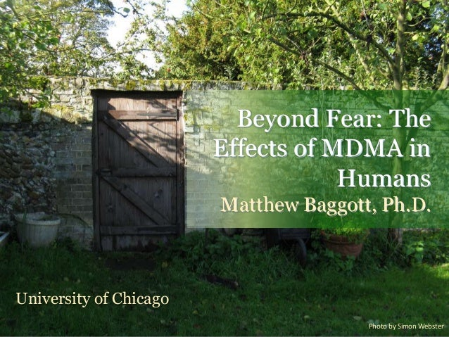 Beyond Fear: TheEffects of MDMA inHumansMatthew Baggott, Ph.D.University of ChicagoPhoto by Simon Webster