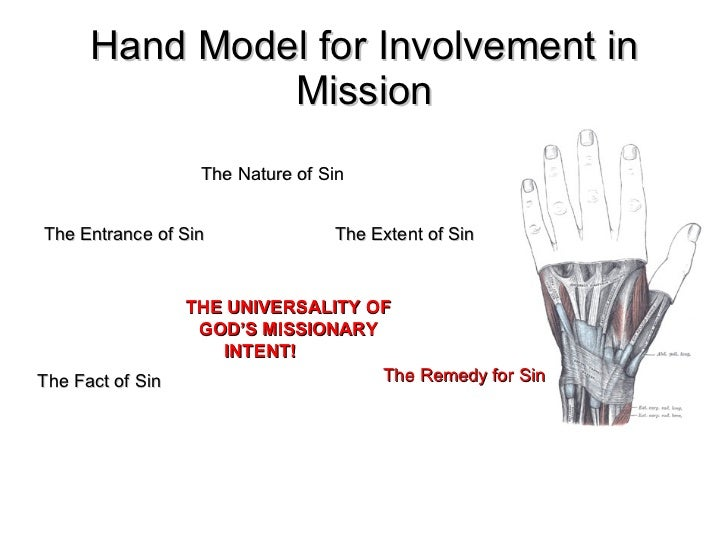Hand Model for Involvement in Mission The Fact of Sin The Entrance of Sin The Nature of Sin The Extent of Sin The Remedy f...