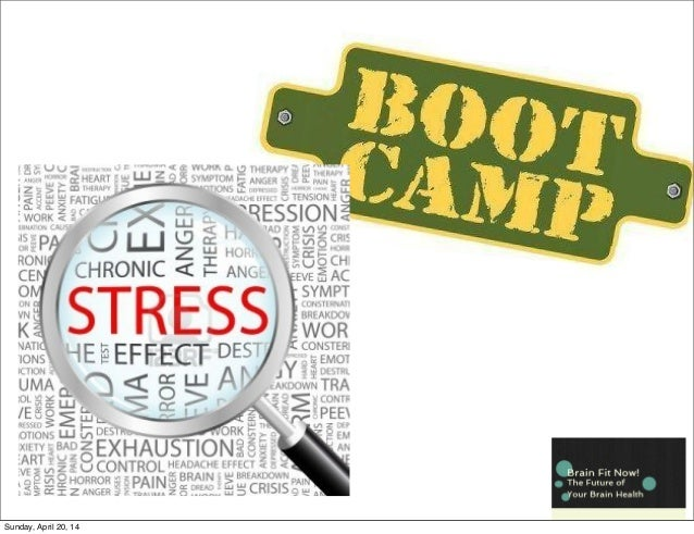 Brain Fit Now! Boot Camp Stress Management