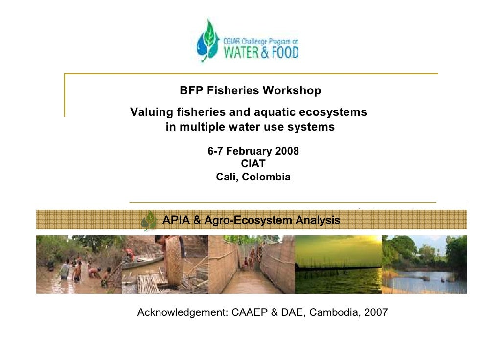 BFP Fisheries Workshop Valuing fisheries and aquatic ecosystems       in multiple water use systems               6-7 Febr...
