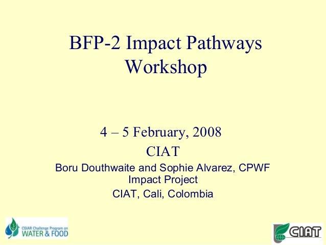 BFP-2 Impact Pathways        Workshop        4 – 5 February, 2008                CIATBoru Douthwaite and Sophie Alvarez, C...