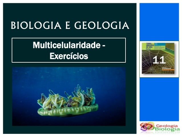 BIOLOGIA E GEOLOGIA   Multicelularidade -       Exercícios        11