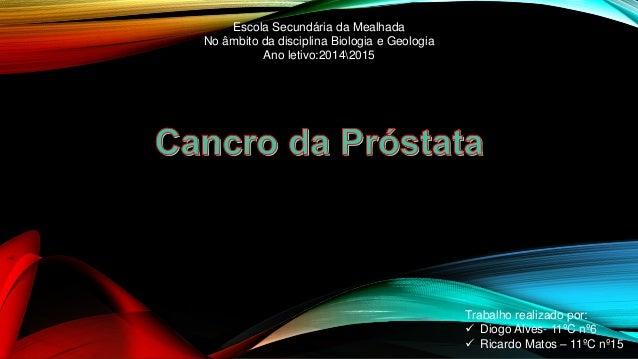 Trabalho realizado por:   Diogo Alves- 11ºC nº6   Ricardo Matos – 11ºC nº15  Escola Secundária da Mealhada  No âmbito da...