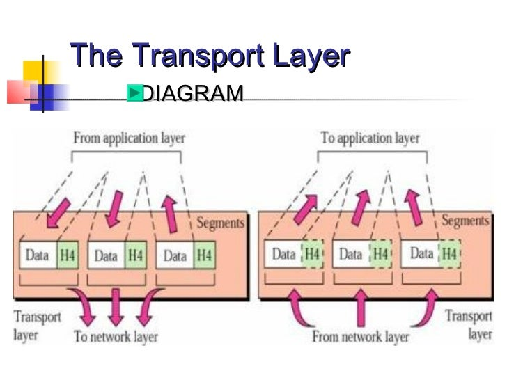 images of network layer diagram   diagramscollection network layer diagram pictures diagrams