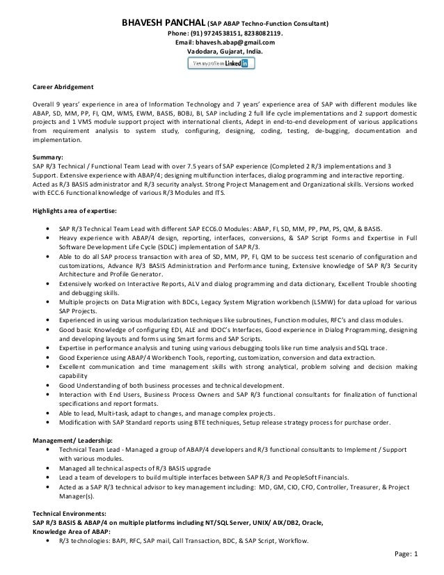 sap technical consultant cv