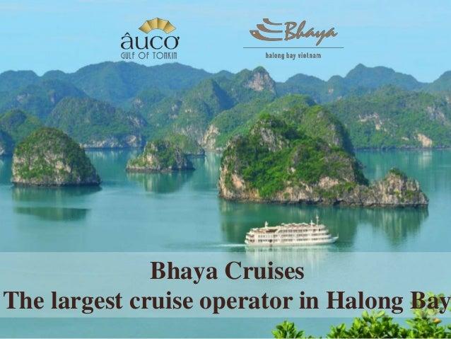 Bhaya Cruises The largest cruise operator in Halong Bay