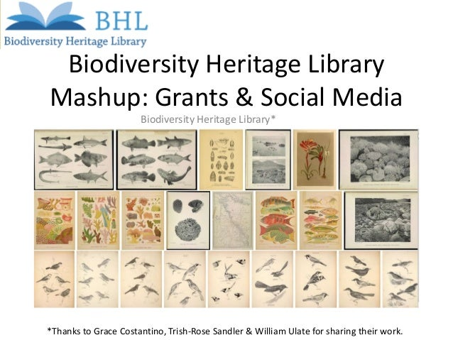 Biodiversity Heritage Library Mashup: Grants & Social Media Biodiversity Heritage Library*  *Thanks to Grace Costantino, T...