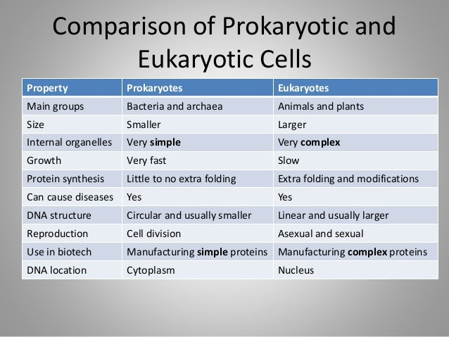 comparison of prokaryotic and eukaryotic cells The main difference between these two types of cells is the defined nucleus, existing only in eukaryotic cells prokaryotic organisms can be unicellular or colonial and include eubacteria and archaebacteria.