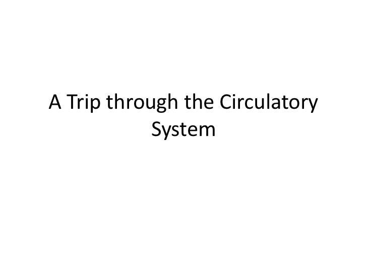 A Trip through the Circulatory            System