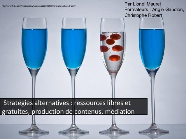 Stratégies alternatives (Biblioquest, Montpellier, 2012)
