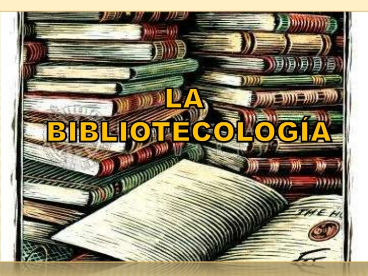 Bibliotecologia sandra marin