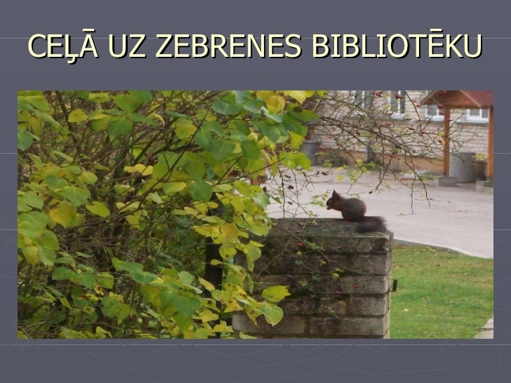 Zebrenes bibliotēkas rādītāji_MD