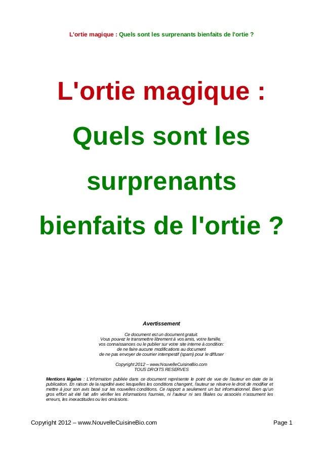 Lortie magique : Quels sont les surprenants bienfaits de lortie ?           Lortie magique :                   Quels sont ...