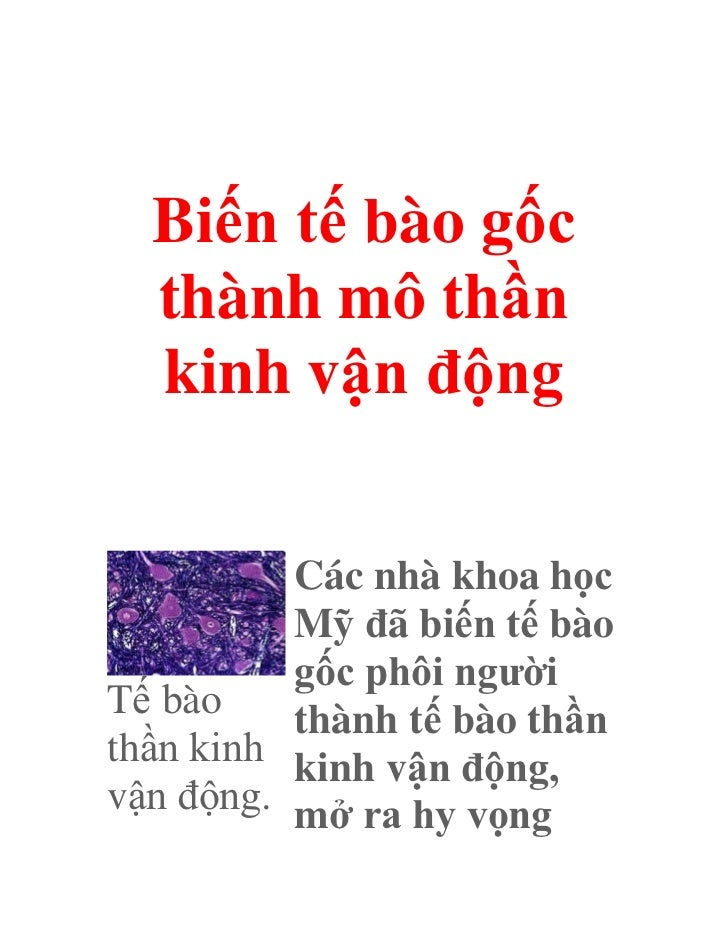 Bien te bao_goc_thanh_mo_than_kinh_van_dong_5219