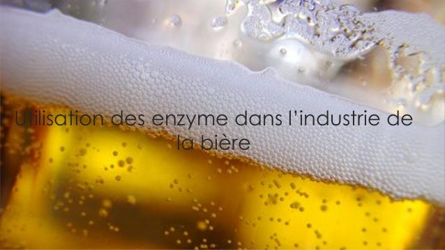utilisation des enzyme dans l'industrie de la bière