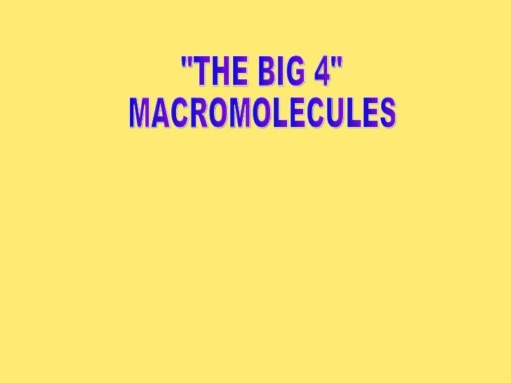 """""""THE BIG 4"""" MACROMOLECULES"""