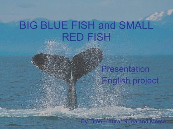 Big Blue Fish And Small Red Fish