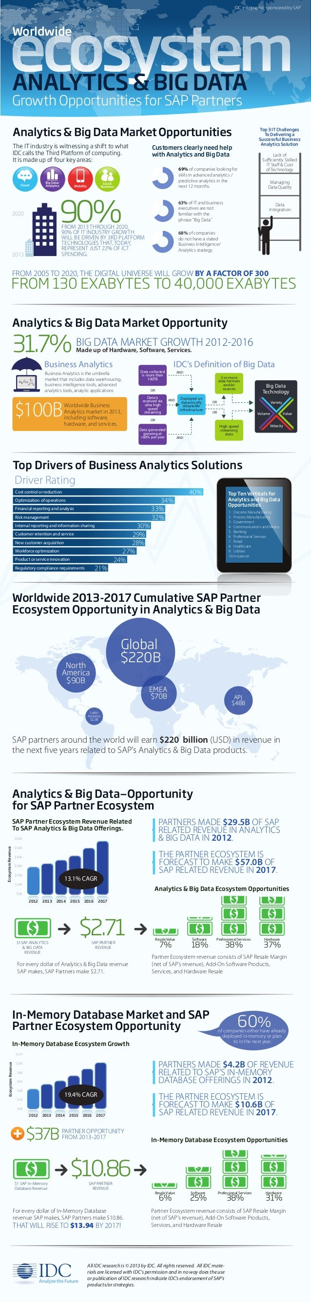 Analytics & Big Data: Growth Opportunities for SAP Partners