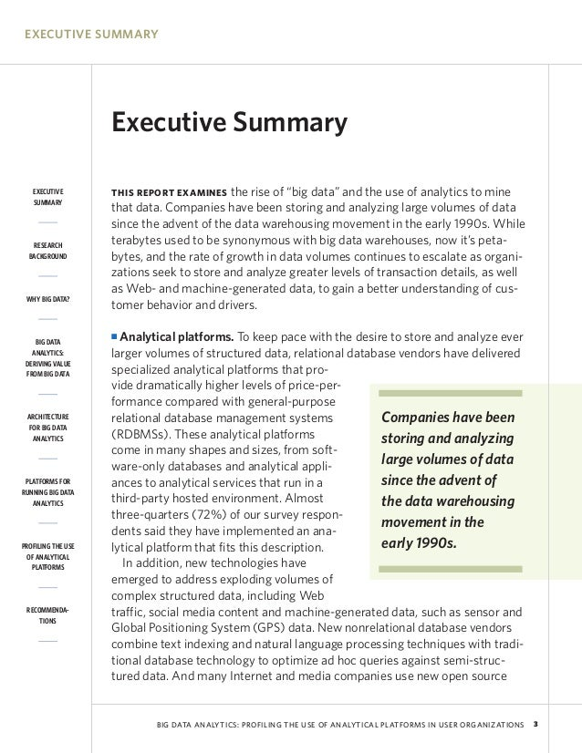Executive Summary  Resume Executive Summary Sample