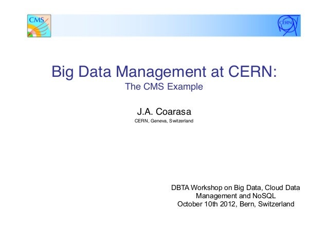 Big Data Management at CERN: The CMS Example