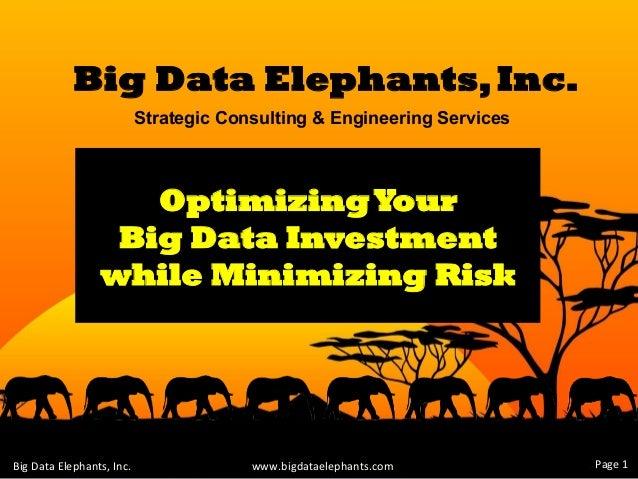 Big Data Elephants - Strategic Consulting & Engineering Services