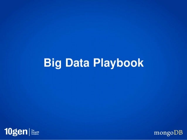 Big Data Playbook