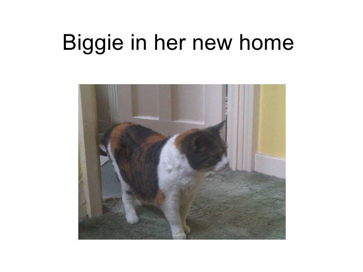 Biggie in her new home