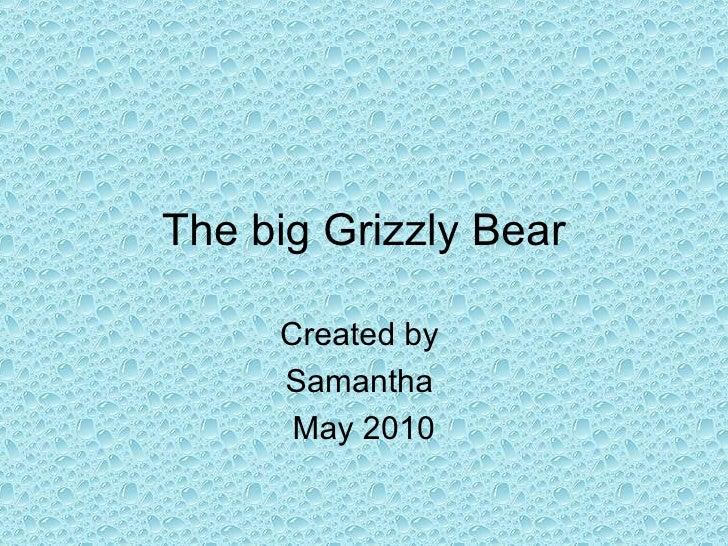Big grizzly bears
