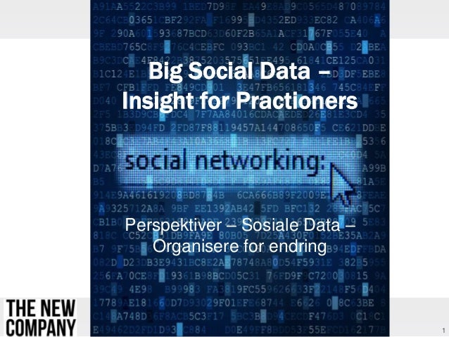 Big Social Data – Insight for Practioners  Perspektiver – Sosiale Data – Organisere for endring  1
