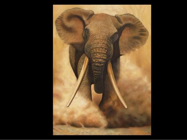 Elephants_Leaves