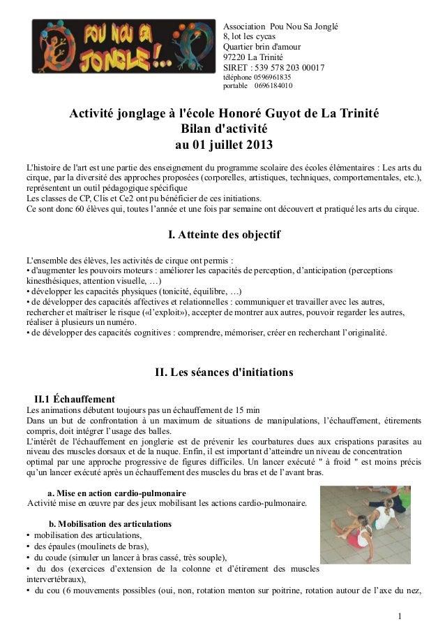 Activité jonglage à l'école Honoré Guyot de La Trinité Bilan d'activité au 01 juillet 2013 L'histoire de l'art est une par...