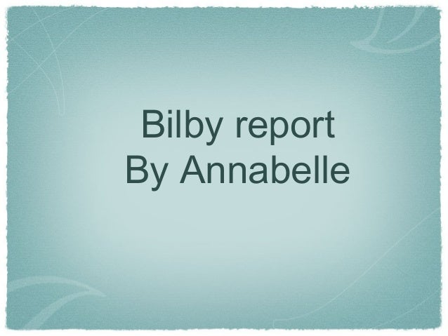 Bilby report By Annabelle