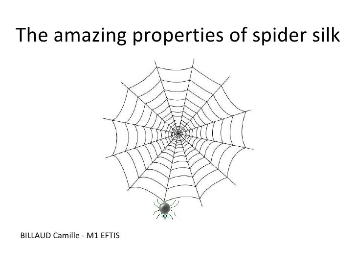 The amazing properties of spider silk BILLAUD Camille - M1 EFTIS