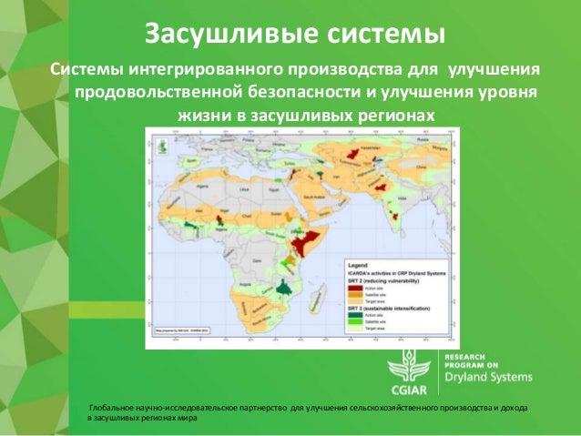 Глобальное научно-исследовательское партнерство для улучшения сельскохозяйственного производства и дохода в засушливых рег...