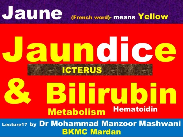 Jaundice & Bilirubin Lecture17 by Dr Mohammad Manzoor Mashwani BKMC Mardan Metabolism Jaune (French word)- means Yellow IC...