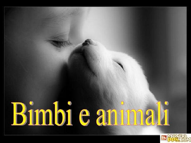 Bimbi e animali