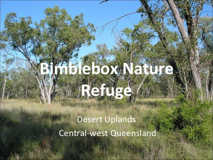 Biodiversity and threats in the Desert Uplands: The case of Bimblebox Nature Refuge