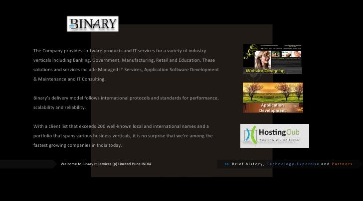Binary IT Services (P) Limited - Portfolio