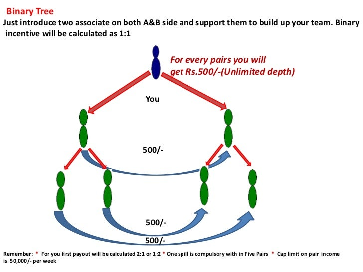 Binary TreeJust introduce two associate on both A&B side and support them to build up your team. Binary incentive will be ...