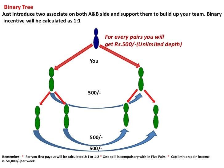 FriendsBazar.Biz Business Plan with Benefits