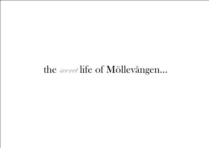 The Secret Life of Möllevången