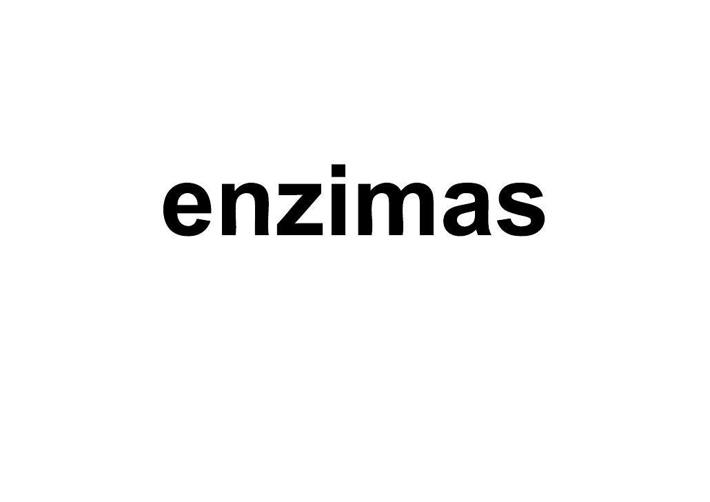 Bio2  6 Enzimas