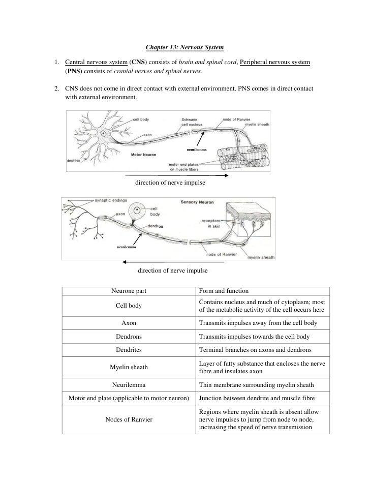 Biology - Chapter 11-15 - Excretion, Homeostasis, Nervous system, Eye…